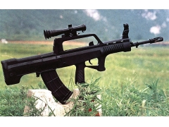 Type 95 Assault Rifle